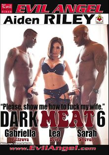 Dark Meat 6, starring Gabriella Paltrova, Jovan Jordan, Sarah Shevon, Lea Lush, Jason Brown and Nat Turner, produced by Belladonna Entertainment and Evil Angel.