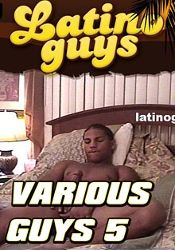 Gay Adult Movie Various Guys 5