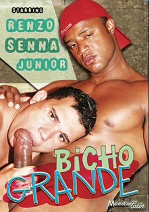 Bicho Grande, starring Senna (m), Renzo and Junior, produced by Manhattan Latin.