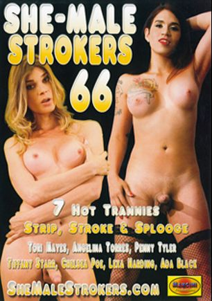 She-Male Strokers 66, starring Tori Mayes, Angelina Torres, Lexa Harding, Ada Black, Chelsea Poe, Penny Tyler and Tiffany Starr, produced by Mancini Productions.