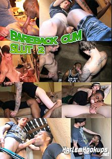 Bareback Cum Slut 2, produced by Ch. 2 Productions.