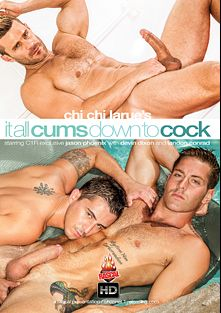 It All Cums Down To Cock, starring Jason Phoenix, Armond Rizzo, Devin Dixon, Alessandro Del Toro, Landon Conrad and Casey Everett, produced by Rascal Video, Channel 1 Releasing and All Worlds Video.