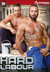 Gay Adult Movie Hard Labour