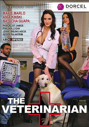 Straight Adult Movie The Veterinarian