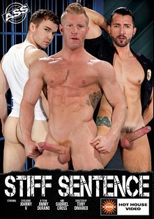 Stiff Sentence, starring Johnny V., Jimmy Durano, Gabriel Cross, Kyle Kash, Rocco Steele, Sean Duran and Brian Bonds, produced by Hot House Entertainment and Falcon Studios Group.