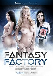 Straight Adult Movie Fantasy Factory