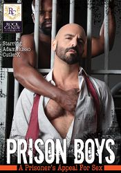 Gay Adult Movie Prison Boys: A Prisoner's Appeal For Sex