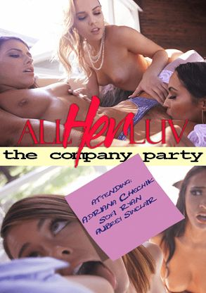 Straight Adult Movie The Company Party - back box cover