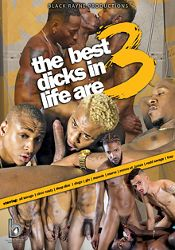 Gay Adult Movie The Best Dicks In Life Are 3