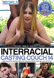 Straight Adult Movie Interracial Casting Couch 14