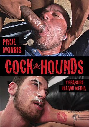 Gay Adult Movie Cock Hounds