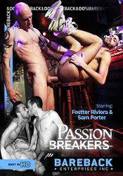 Gay Adult Movie Passion Breakers