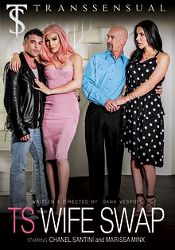 Straight Adult Movie TS Wife Swap