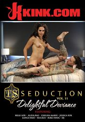 Straight Adult Movie TS Seduction 11: Delightful Deviance