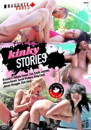 Straight Adult Movie Kinky Stories - front box cover