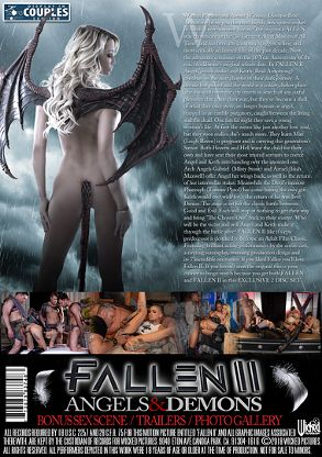 Straight Adult Movie Fallen 2 - back box cover