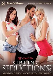 Straight Adult Movie Sibling Seductions 3