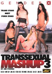 Straight Adult Movie Transsexual Mashup 3