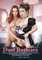 Straight Adult Movie Dust Bunnies
