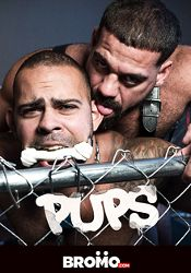 Gay Adult Movie Pups