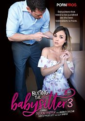 Straight Adult Movie Busting The Babysitter 3