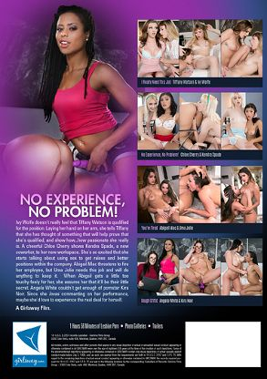 Straight Adult Movie No Experience, No Problem - back box cover