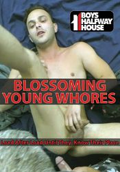 Gay Adult Movie Blossoming Young Whores
