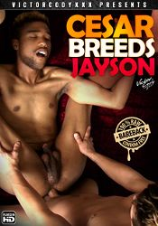 Gay Adult Movie Cesar Breeds Jayson