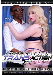 Straight Adult Movie Interracial Trans Action 2