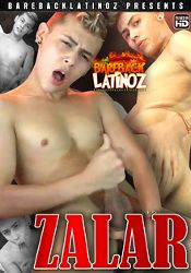 Gay Adult Movie Zalar