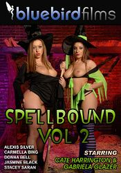 Straight Adult Movie SpellBound 2