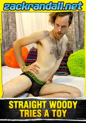 Gay Adult Movie Straight Woody Tries A Toy - back box cover