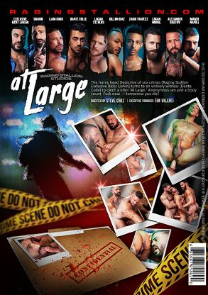 Gay Adult Movie At Large - back box cover