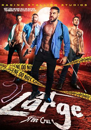Gay Adult Movie At Large - front box cover