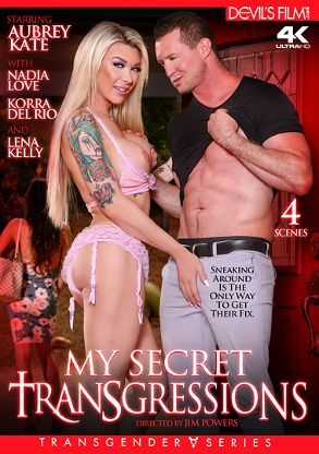 Straight Adult Movie My Secret Transgressions - front box cover