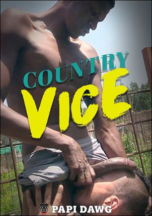 Gay Adult Movie Country Vice