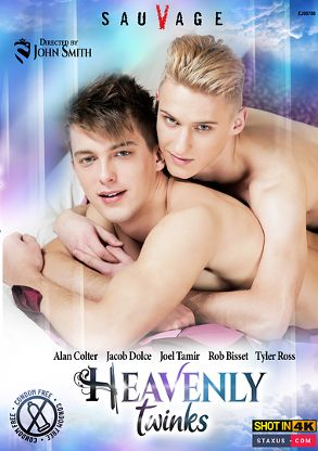 Gay Adult Movie Heavenly Twinks - front box cover
