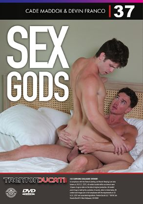 Gay Adult Movie Sex Gods - back box cover