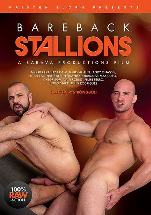 Gay Adult Movie Bareback Stallions