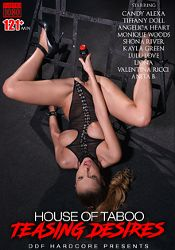 Straight Adult Movie House Of Taboo: Teasing Desires