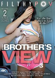 Straight Adult Movie Step Brother's View 3