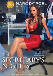 Straight Adult Movie The Secretary's Nights