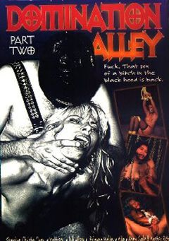 "Adult entertainment movie ""Domination Alley 2"" starring Abbey Lane, Breanna Malloy & Juli Wilson. Produced by LBO."