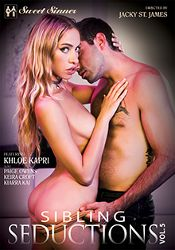 Straight Adult Movie Sibling Seductions 5