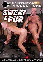 Gay Adult Movie Sweat And Fur