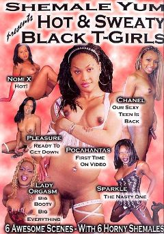 "Adult entertainment movie ""Hot And  Sweaty Black T-Girls"" starring Pleasure (o), Lady Orgasm & Pocahontas (o). Produced by She Male Yum."