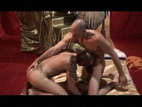 gay black suck dick