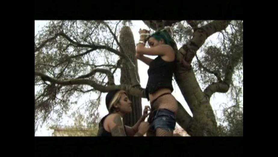 Futuristic Lesbian Punk Cowgirls in the Desert, produced by Bleu Productions. Video Categories: Fetish, Lesbian and BDSM.
