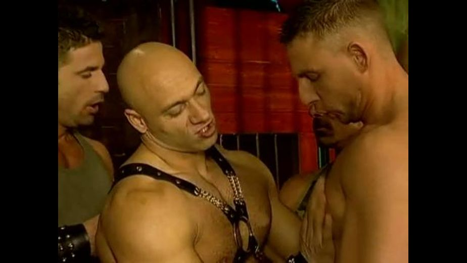 Dungeon Monsters Prepare To Unleash Hell, starring James Jordan, Randy Jones, Julian Vincenzo and Tamas (II), produced by Private Manstars. Video Categories: Safe Sex, Muscles, Orgies and Leather.