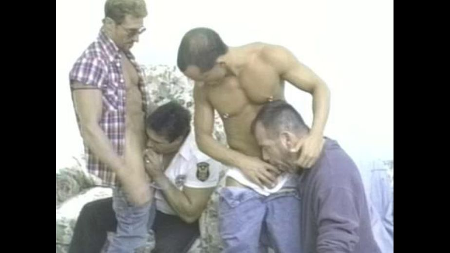 Cards and Cock on Poker Night, produced by Miami Beach Studios. Video Categories: Safe Sex, Classic, Jocks, Bear, Orgies, Blowjob, Latin and Muscles.